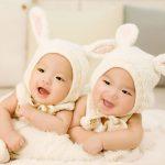 双子のテレパシー奇妙な一致の謎